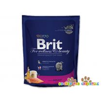 BRIT Premium Cat Salmon 800g