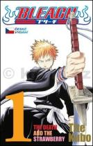 Tite Kubo: Bleach 1